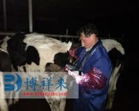 太原众和养殖有限公司BXL-V30奶牛B超培训