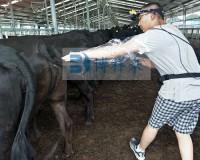 贵州恒大进口牛用B超培训现场