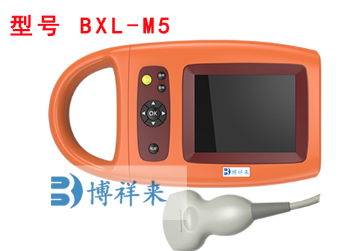 BXL-M5